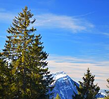 Rigi Views by Luke Griffin