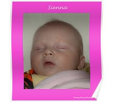 Sienna sleeping Poster