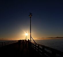 Seagull, dock, people, sunset by gerardofm4
