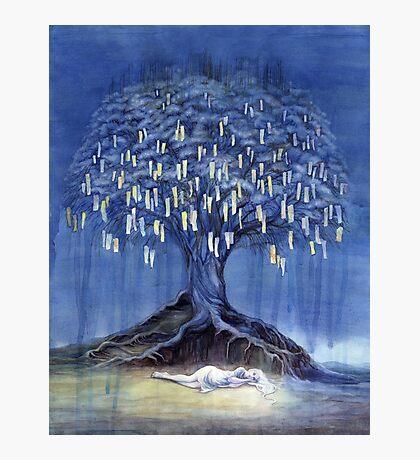Prayer Tree Photographic Print