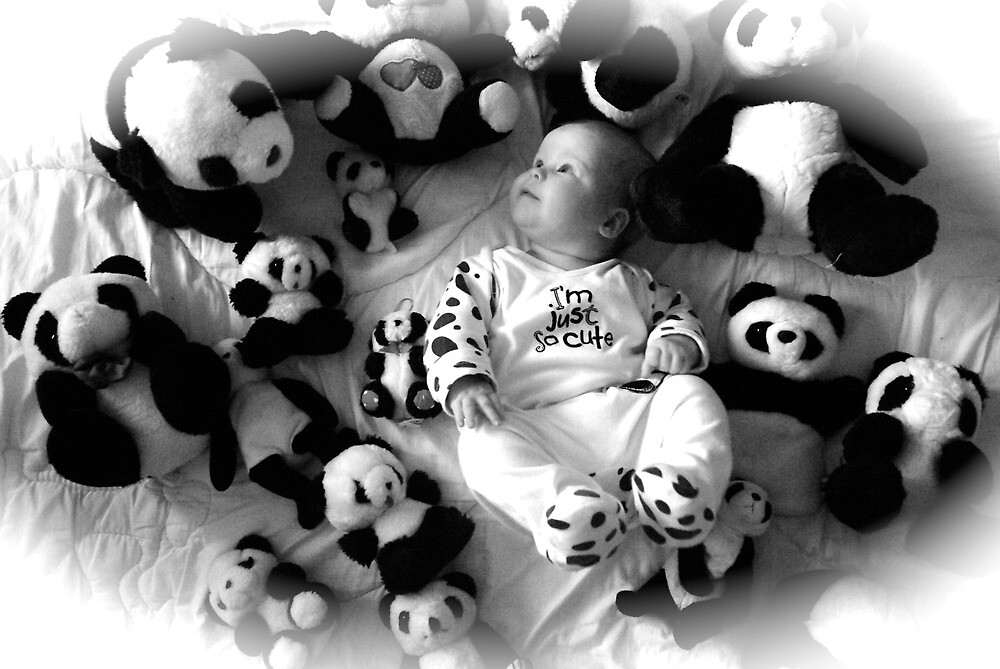 Panda baby by aginia