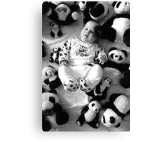Panda baby 2 Canvas Print