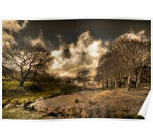 A Tinted Winter Landscape Poster