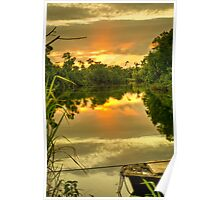 Floating on Ninds (Creek - Innisfail, Nth Qld) Poster