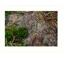a moss pit Art Print