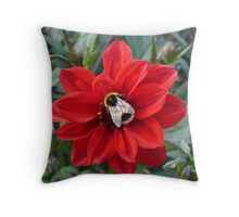 Bee on a red flower, Osbourne House Throw Pillow