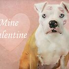Be Mine Valentine by Zdogs