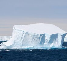 The Iceberg by John Dalkin