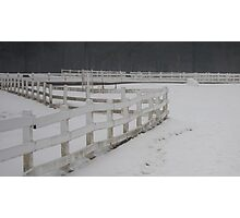 Stable Fence Photographic Print
