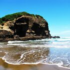 Bethells Beach by dozzam