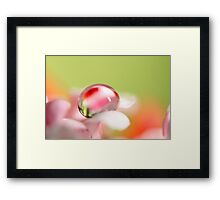 Pretty Pastel Framed Print