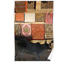 Obliging Bovine, Jaiselmir, Rajasthan, india Poster