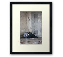 Poverty With Fake Levis, Ahmedabad, Gujurat, India Framed Print