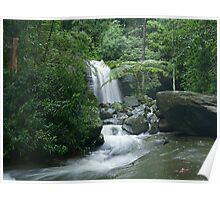 buderim waterfall from a little downstream Poster