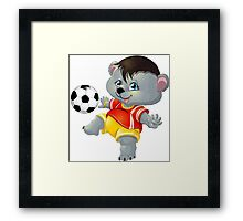 bear and ball Framed Print