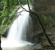 under the buderim waterfall by sharpbokeh