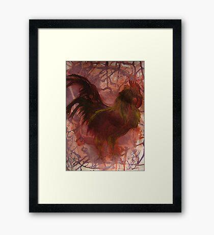 Rhode Island Red Bird Framed Print