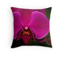 Burgandy Phalaenopsis Throw Pillow