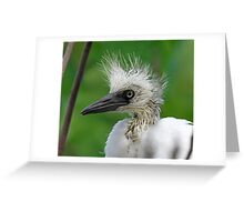 Mom ,can i please have a proper brush!! Greeting Card