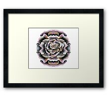 Sweet Pink Acrylic Rose Painting Framed Print