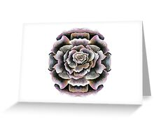 Sweet Pink Acrylic Rose Painting Greeting Card
