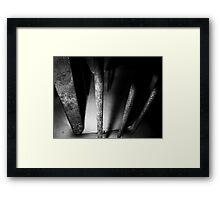02-04,05,06-2011  Torture Framed Print