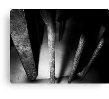 02-04,05,06-2011  Torture Canvas Print