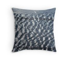 Ripples in the Water Throw Pillow