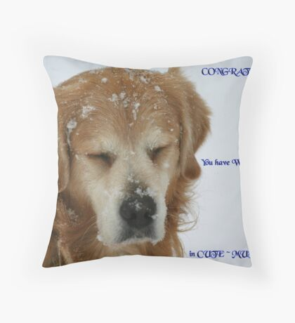 Entry for Banner Challenge Throw Pillow