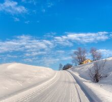 A lovely winter's day by Veikko  Suikkanen