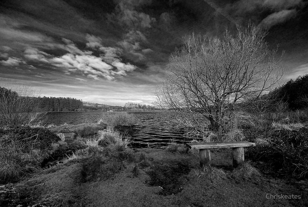 Well Placed Bench by Chriskeates