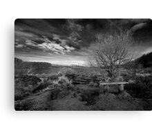 Well Placed Bench Canvas Print