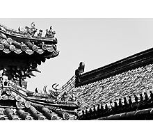 Imperial Roof Photographic Print