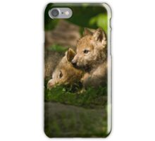 Sibling Love iPhone Case/Skin