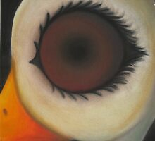 Ostrich and the Eye by ShayCat