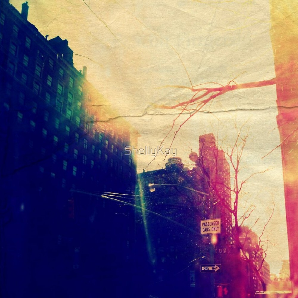 E. 73rd & Park Ave.  by ShellyKay