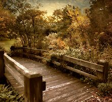 Splendor Bridge by Jessica Jenney
