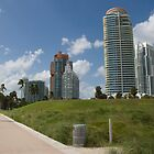 Miami by imagic
