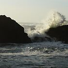 seal rock-breakers crashing by tego53