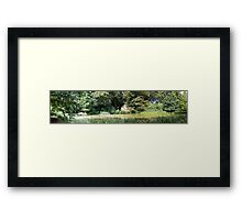 Summer by The Pond Framed Print