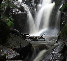 Olinda Falls by Jenni Tanner