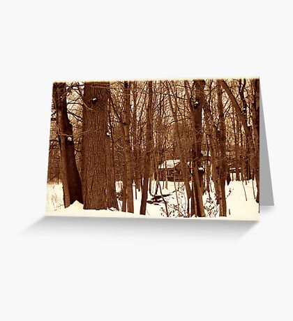 020711-44  ONCE UPON A TIME WE ALL LIVED DEEP IN THE FOREST... Greeting Card