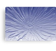 Flower In Blue Canvas Print