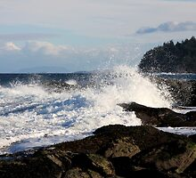 Big Wave by TerrillWelch