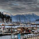 Horseshoe Bay by Wendi Donaldson Laird