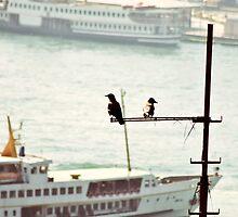 İstanbul Kanatlarımın Altında by photoforsoul