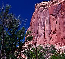 At The Capital - Capital Reef National Park by Melissa Seaback