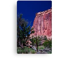 At The Capital - Capital Reef National Park Canvas Print