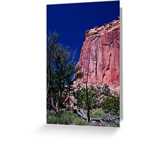 At The Capital - Capital Reef National Park Greeting Card