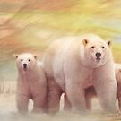 Arctic Summer by Trudi&#x27;s Images